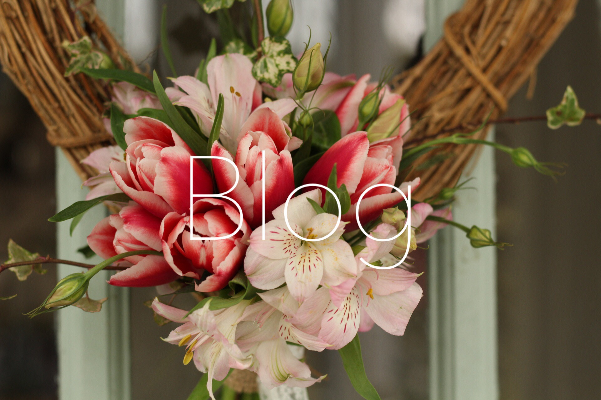 Latest News from The Flower Cottage